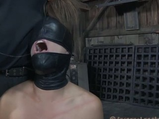 Tortured slutty bitch screams
