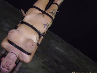 Bounded beauty is dripping wet from her sexy torment